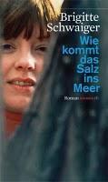 Rezension - Wie kommt das Salz ins Meer von Brigitte Schwaiger