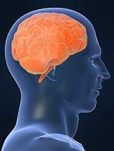 Schwaches Herz sorgt für älteres Gehirn