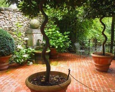 Les Jardins Agapanthe - Magie et Emotions