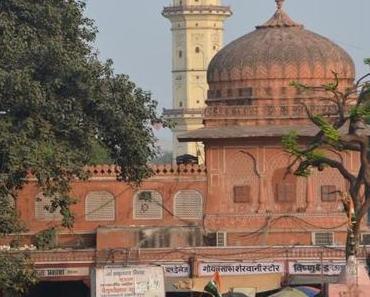 3 Wochen Indien: Jaipur, the pink City, Teil 1