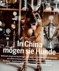 Milliardenmarkt Hunde-Produktion