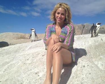 Shakira: Angst vor bissigen Seelöwen