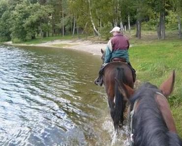 Reiturlaub in Polen: Die Ausritte