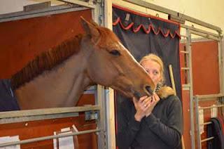 Ein Tag vor der Göteborg Horse Show