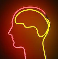 Wie schlau können wir noch werden? – Die Grenzen unseres Gehirns
