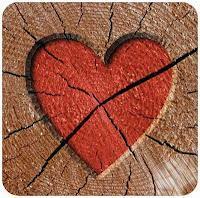 """Rezension: """"Der Junge mit dem Herz aus Holz"""" - John Boyne"""