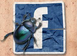 Mutter bringt Kind wegen Facebook Spiel um.