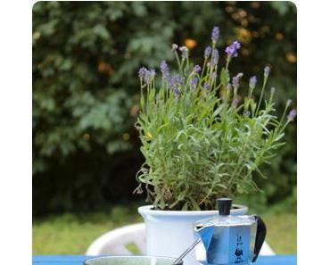DIY Palettenmöbel: Paletten Gartentisch