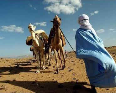 """Tuaregs: """"UNO-Intervention in Mali wird ein katastrophaler Fehlschlag!"""""""