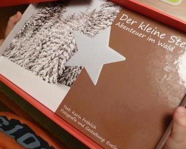 Der kleine Stern: ein Familienadventskalender