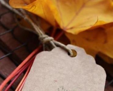 Wordless/Wordful Wednesday: Seasons...