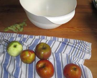 Wie man Apfelbrei selbst kochen kann..