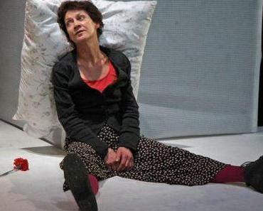 Einen Tag wie zehn Jahre leben – Oskar und die Dame in Rosa von Éric-Emmanuel Schmitt