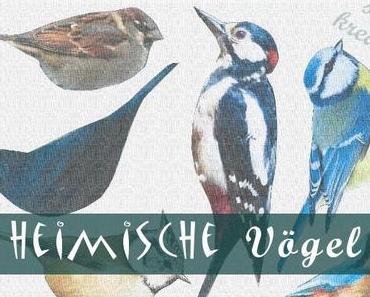 kreativ sein: heimische Vögel mit Washi tape
