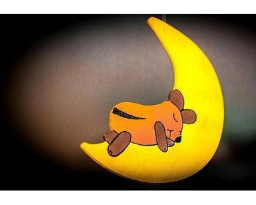 Welttag des Schlafes – World Sleep Day 2013