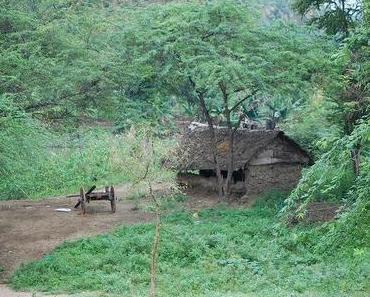 Thekkady: Erste Bergstation – und ein blaues Auge