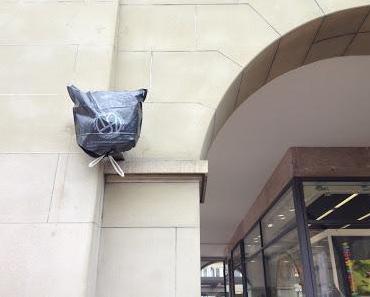 Ein Müllsack, der Oppenheim-Brunnen und die Vox Populi