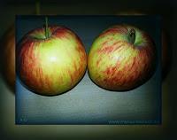 Reich die Apfelkette weiter