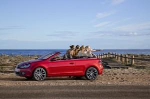 Fiat 500C bis VW Golf Cabrio: Günstig durch die neue Cabrio-Saison