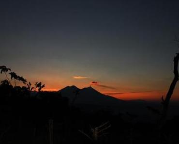 Teil 3: Kaffee-Exkursion nach Guatemala
