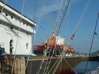 Der Panamakanal wird 100: Zum Jubiläum bietet Star Clippers mit dem Segel-Kreuzfahrtschiff »Star Flyer« gleich drei Passagen der Wasserstraße an