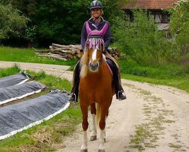 Miss Pferd