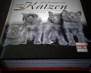 [Buchrezension] Liebenswerte Katzen