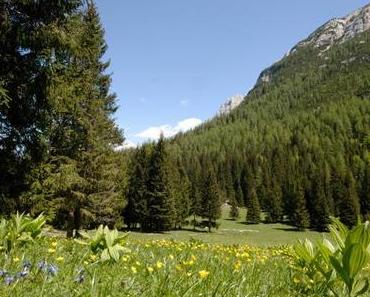 Der Blinde • Ein Märchen aus dem Trentino