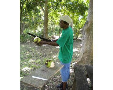 Ein Reisebericht aus Jamaika (Teil 2)