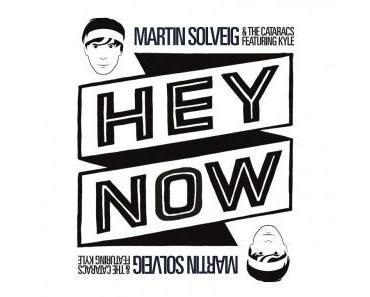 "Martin Solveig – ""Hey Now"" Platz 9 iTunes Charts"