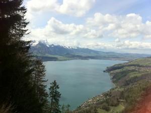 Schweizer Kulturleben