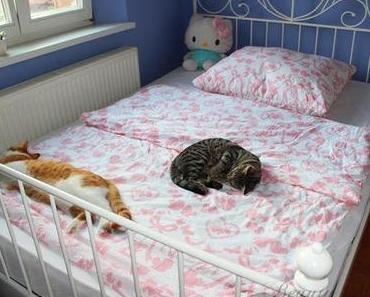 Neues Bett + Mädchenbettwäsche ♥