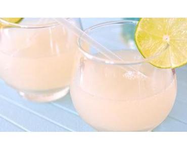 Ginger Ale zuckerfrei & fructosefrei
