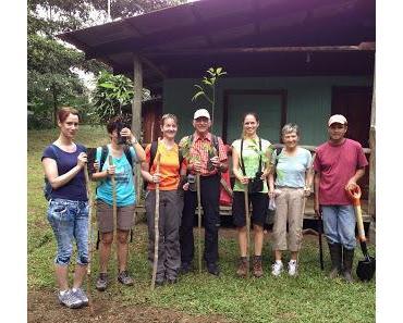 Ein kleiner Wald in Costa Rica fürs Forum Anders Reisen
