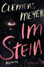 """LiteraTour Nord 2013-2014 geht weiter: Clemens Meyer mit """"Im Stein"""" am 5. Dezember in Hannover"""