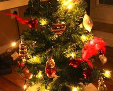 Weihnachtsdeko & DIY Adventskalender