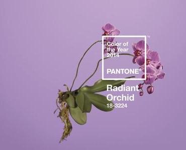 19.12.13 - [Pantone Farbe des Jahres 2014] Radiant Orchid.....ich habe es ja schon immer gewußt!!!
