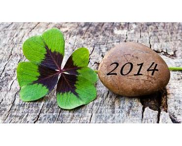 Die guten Vorsätze für das neue Jahr 2014