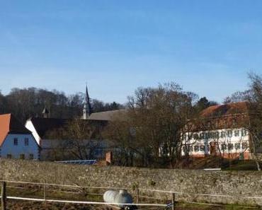 Miniwanderung rund um das Kloster Engelthal