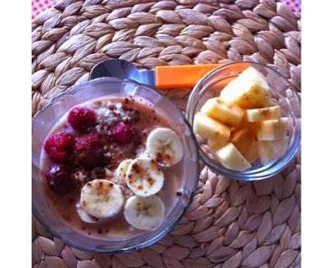 Einfaches Porridge mit Hafermilch
