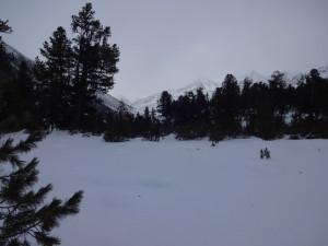 Schneeschuh-Anfängertour – Mittergrathütte / Kühtai