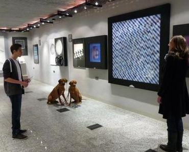 Mit Hund im Museum – Explora Science Center Frankfurt