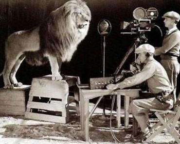 Das Kino vergöttert das Geheimnis der Bewegung: Literatur und Film