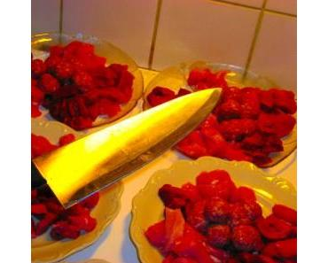"""Ein Schriftsteller beim """"Perfekten Dinner"""" – Boscher zum Casting eingeladen"""