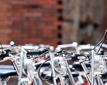 Bicycle Day – Albert Hofmann auf Fahrradtour