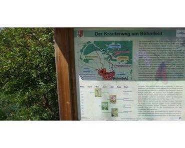 Ausflugstipps mit Kindern: Böhmfelder Kräuterweg und Spielplatz