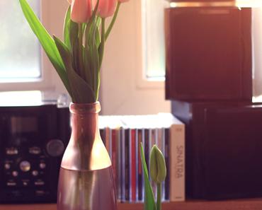 Miss Ètoile, rosafarbende Tulpen und das Rennen gegen die Zeit.