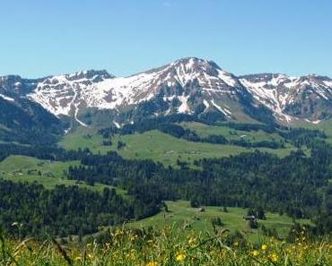 Feuerstätter (1.645m) – der Allgäu von seiner schönsten Seite