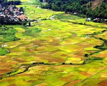 Ins Tal von Mai Chau – abseits des Großstadtrummels