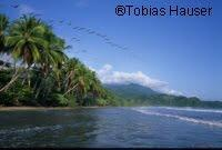 Yachthafen in Moin (Costa Rica) geplant